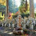 秋の羅漢庭にて ほほえむ観音菩薩さま