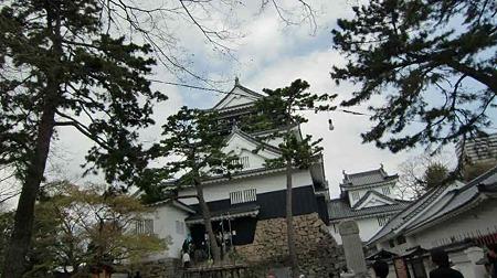 okazaki sakura matsuri-220407-4