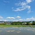 Photos: 梅雨の晴れ間(3)