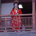 写真: ♪~「菊姫顔見せ」~♪