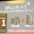Photos: Canon EOS 60D Touchi&Try:28