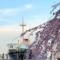 桜咲く日の旅立ち 2