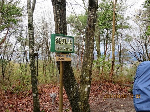 鶏冠山(491m)山頂