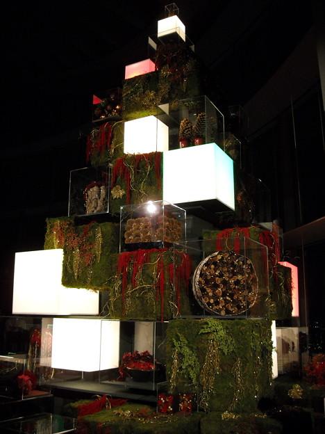 東京シティビューのクリスマスツリー