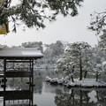 雪の金閣寺 (7)