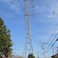 写真: 東京中線2061号鉄塔