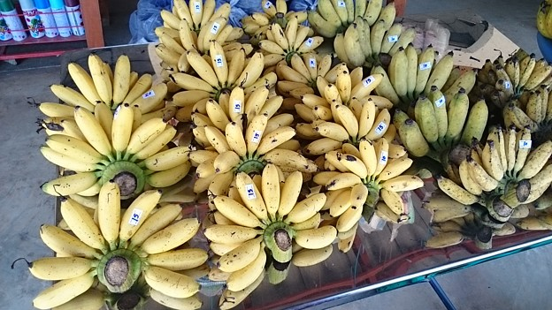 写真: 小バナナです 甘くてウマイ、15Bは50円くらい