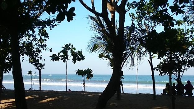 写真: 朝の海岸