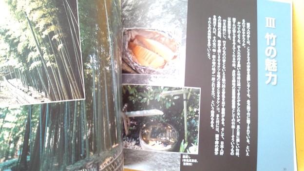 みほん3 常陽藝文 2016年12月号 いばらき 竹百科 植物 雑誌