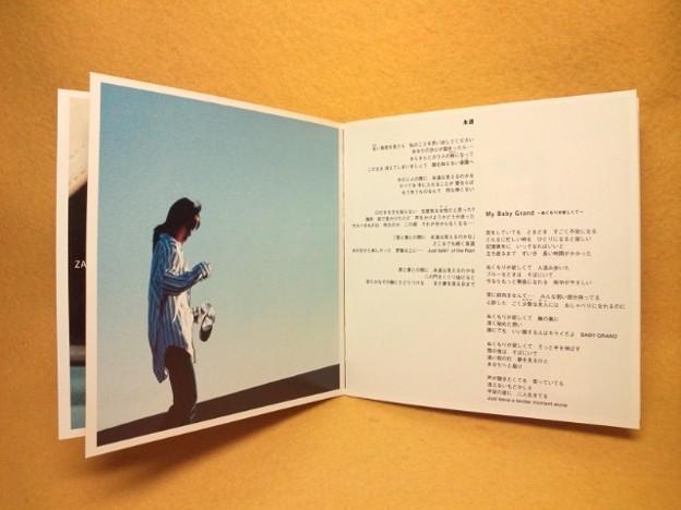 坂井泉水 ザード 永遠 CD 歌詞カード