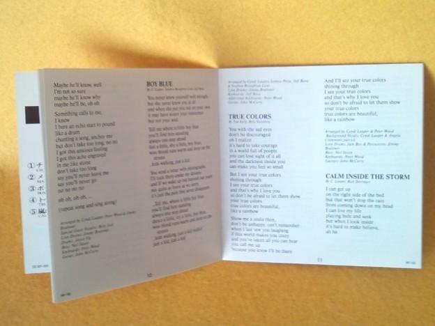 トゥルー・カラーズ シンディ・ローパー CD 歌詞カード