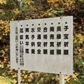 Photos: 小原「せんみ、川見」薬師寺