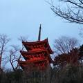 Photos: 朝焼けに染まる奥山方広寺三重の搭