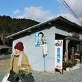 Photos: グリーンマート つげの(黄柳野)