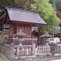 諏訪大社 上社本宮高島神社(8月3日)