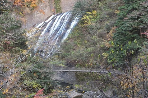 袋田の滝_吊り橋 F8699