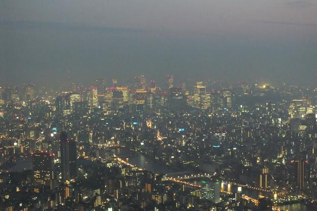 スカイツリーより_夜景 F9519