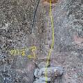Pinnacles NPのトレイル (10)