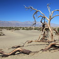 Photos: Death Valley NP (1)