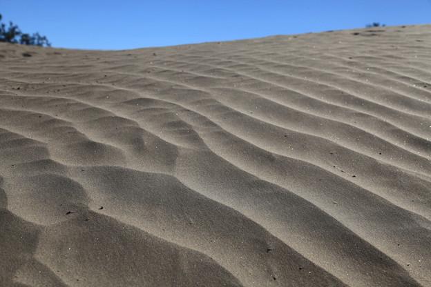 Photos: Death Valley NP (3)