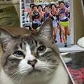 Photos: 箱根駅伝の選手名鑑届きました2