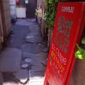 写真: ディープ三軒茶屋の路地2