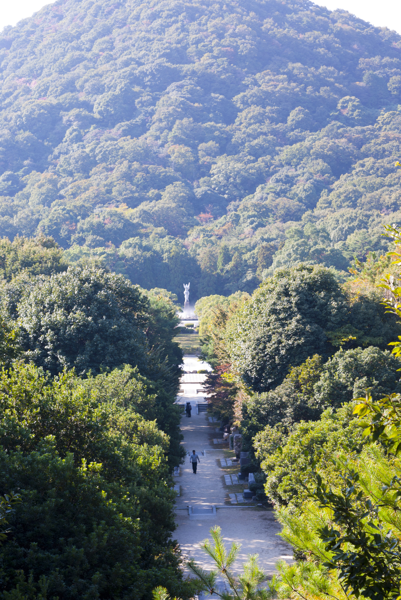 甲山森林公園展望台から