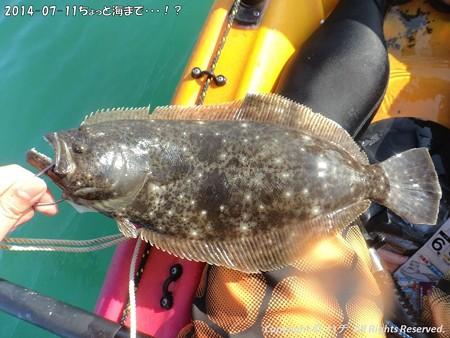 2014-07-11ちょっと海まで・・・!? (4)