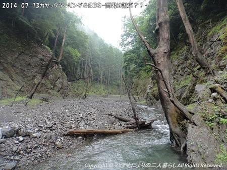 2014-07-13カヤックツーリング&BBQ ?雨男は誰だ??- (9)