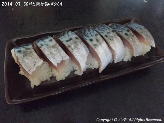 Photos: 2014-07-30鯖と鯵を食い尽くす (1)