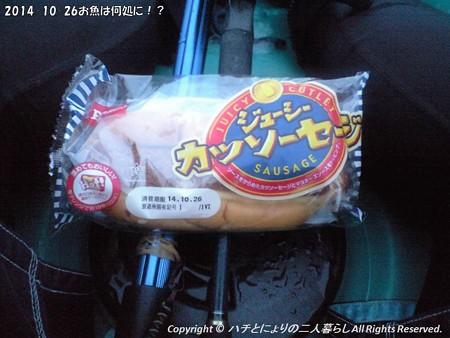 2014-10-26お魚は何処に!? (2)