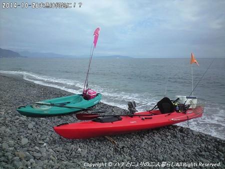 2014-10-26お魚は何処に!? (6)