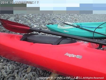 2014-10-26お魚は何処に!? (7)