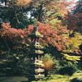 兼六園の秋