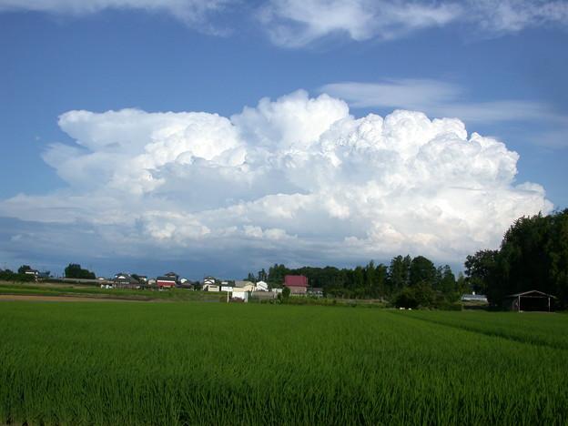 Photos: 台風が去りモコモコ雲