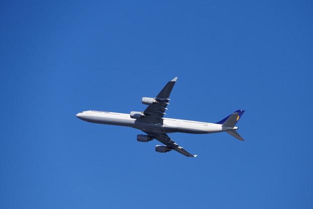 ルフトハンザ A340?