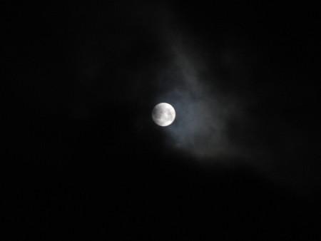 でたでた 月が…