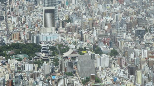 東京スカイツリー(墨田区押上)