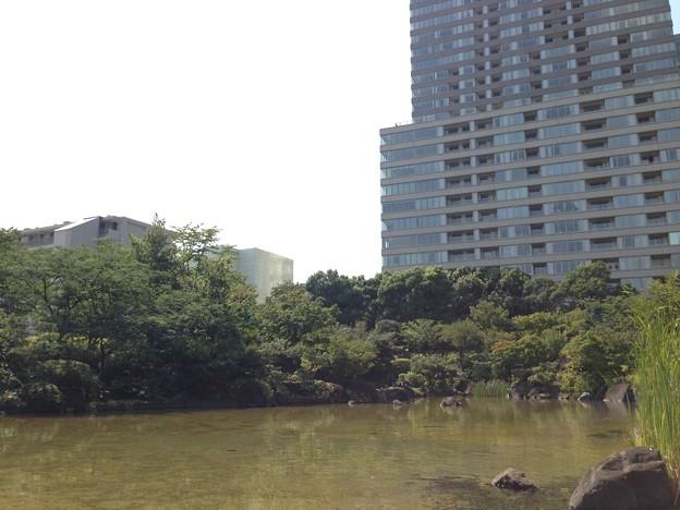 檜町公園(東京ミッドタウン)