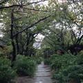 宝戒寺(鎌倉市)