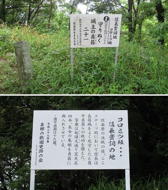 長篠設楽原合戦場(新城市)信長賞詞地(コロミツ坂)