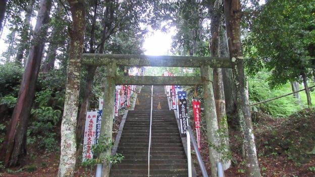長篠設楽原合戦場(新城市)天神山陣地