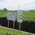 長篠設楽原合戦場(新城市)一重柵建設地