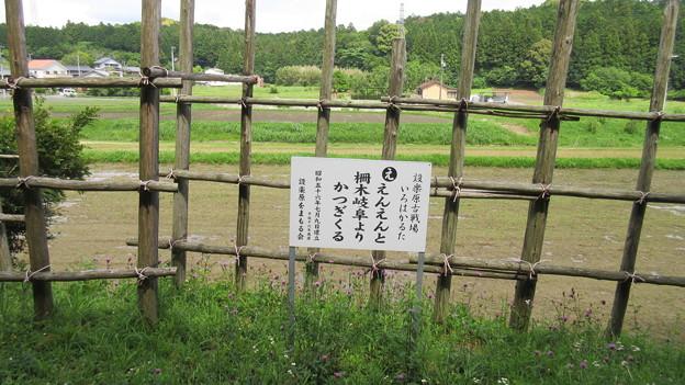 長篠設楽原合戦場(新城市)馬防柵