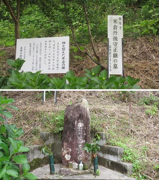 長篠設楽原合戦場(新城市)米倉丹後守正継之墓