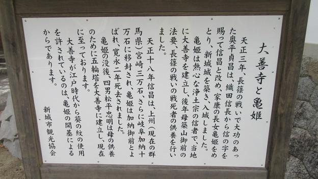 大善寺(新城市)