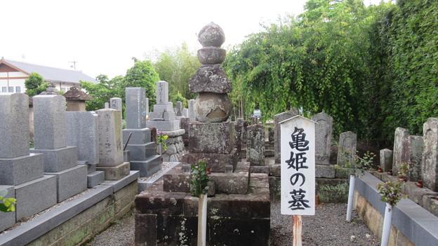 大善寺(新城市)亀姫墓