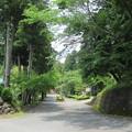 大洞院(周智郡森町)参道