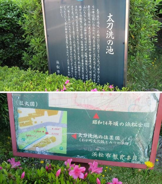 太刀洗の池(浜松市)
