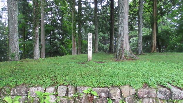 巌邑城(恵那市岩村町)城跡標柱